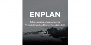Enplan,Hjemmesiden (1)